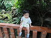 林家花園...下雨也很美:DSC03939.JPG