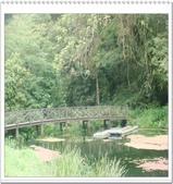 宜蘭、花東:福山植物園