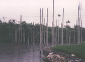 雲林訪古:濁水發電廠入水口.jpg