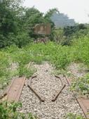 雲林訪古:台糖石龜溪鐵橋.jpg