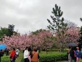 小腳走台灣:中央大學中大湖