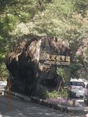 小腳走台灣:武陵國家森林遊樂區