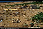澎湖瓦硐。輕旅行:澎湖瓦硐海灘旅行 (8).jpg