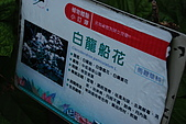 品保協會~台東二日遊:DSC_9841.JPG