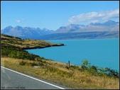 2013超LUCKY紐西蘭跳跳之旅D2-庫克山喙羊鸚鵡小徑+城堡飯店:P1130531.jpg