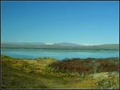 2013超LUCKY紐西蘭跳跳之旅D2-美麗得不可思議之蒂卡波湖:P1130484.jpg