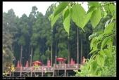 20120324~25阿貴營地+山上人家:P1090129.jpg