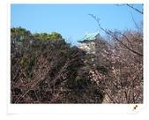 2010東京京都大阪自助DAY6(大阪城+通天閣):IMG_6361.jpg