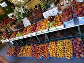 2013紐西蘭超LUCKY跳跳之旅-DAY3克倫威爾水果小鎮&南緯45度:P1140147.jpg