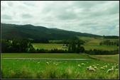 2013超LUCKY紐西蘭跳跳之旅D2-美麗得不可思議之蒂卡波湖:P1130325.jpg
