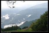 20120324~25阿貴營地+山上人家:P1090284.jpg