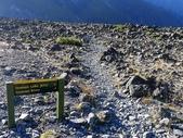 2013紐西蘭超LUCKY跳跳之旅DAY3-塔斯曼冰河船:P1130797.jpg