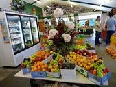 2013紐西蘭超LUCKY跳跳之旅-DAY3克倫威爾水果小鎮&南緯45度:P1140150.jpg