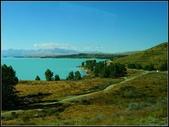2013超LUCKY紐西蘭跳跳之旅D2-美麗得不可思議之蒂卡波湖:P1130450.jpg