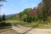 2013.0119新竹水田露營:P1120972.JPG