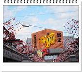 2010東京京都大阪自助DAY8-9(淺草寺~回可愛的家):IMG_6798.jpg