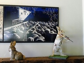 2013紐西蘭超LUCKY跳跳之旅-DAY3克倫威爾水果小鎮&南緯45度:P1140043.jpg