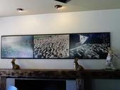 2013紐西蘭超LUCKY跳跳之旅-DAY3克倫威爾水果小鎮&南緯45度:P1140049.jpg