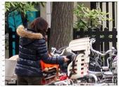 2010東京京都大阪自助DAY8-9(淺草寺~回可愛的家):IMG_6860.jpg