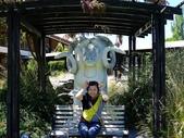 2013紐西蘭超LUCKY跳跳之旅-DAY3克倫威爾水果小鎮&南緯45度:P1140055.jpg