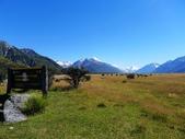 2013紐西蘭超LUCKY跳跳之旅-DAY3克倫威爾水果小鎮&南緯45度:P1130963.jpg