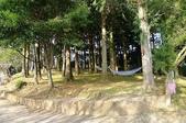 2013.0119新竹水田露營:P1120956.JPG