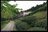 20120324~25阿貴營地+山上人家:P1090322.jpg