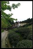 20120324~25阿貴營地+山上人家:P1090323.jpg
