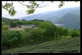 20120324~25阿貴營地+山上人家:P1090329.jpg