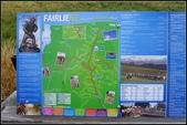 2013超LUCKY紐西蘭跳跳之旅D2-美麗得不可思議之蒂卡波湖:P1130349.jpg