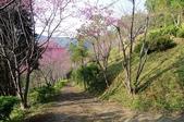 2013.0119新竹水田露營:P1120959.JPG