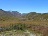 2013紐西蘭超LUCKY跳跳之旅-DAY3克倫威爾水果小鎮&南緯45度:P1140076.jpg