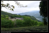 20120324~25阿貴營地+山上人家:P1090332.jpg