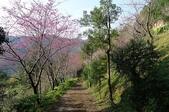 2013.0119新竹水田露營:P1120960.JPG