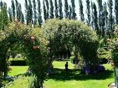 2013紐西蘭超LUCKY跳跳之旅-DAY3克倫威爾水果小鎮&南緯45度:P1140172.jpg