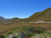 2013紐西蘭超LUCKY跳跳之旅-DAY3克倫威爾水果小鎮&南緯45度:P1140079.jpg