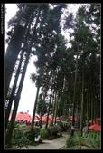 20120324~25阿貴營地+山上人家:P1090338.jpg