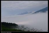 20120324~25阿貴營地+山上人家:P1090108.jpg