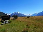 2013紐西蘭超LUCKY跳跳之旅-DAY3克倫威爾水果小鎮&南緯45度:P1130968.jpg