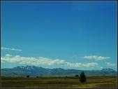 2013超LUCKY紐西蘭跳跳之旅D2-美麗得不可思議之蒂卡波湖:P1130434.jpg