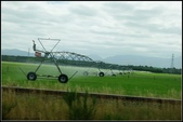 2013超LUCKY紐西蘭跳跳之旅D2-美麗得不可思議之蒂卡波湖:P1130318.jpg