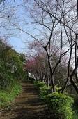 2013.0119新竹水田露營:P1120964.JPG