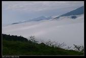 20120324~25阿貴營地+山上人家:P1090117.jpg