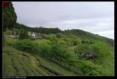 20120324~25阿貴營地+山上人家:P1090346.jpg