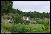 20120324~25阿貴營地+山上人家:P1090347.jpg