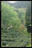 20120324~25阿貴營地+山上人家:P1090123.jpg