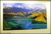 2013超LUCKY紐西蘭跳跳之旅D1~D2之和草泥馬的第一次親密接觸:P1130211.jpg