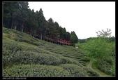 20120324~25阿貴營地+山上人家:P1090350.jpg