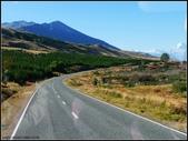 2013超LUCKY紐西蘭跳跳之旅D2-庫克山喙羊鸚鵡小徑+城堡飯店:P1130527.jpg