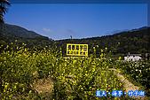 97.03.27藍天‧海芋‧竹子湖:nEO_IMG_IMGP7027.jpg
